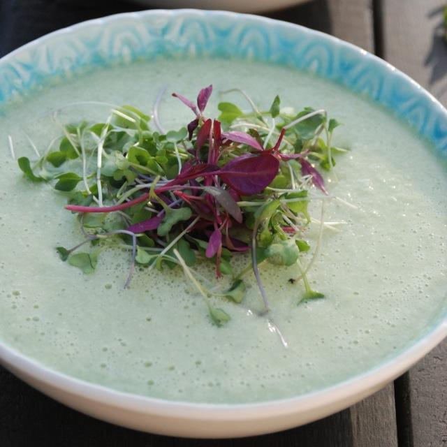 Creamy Vegan Cucumber Soup