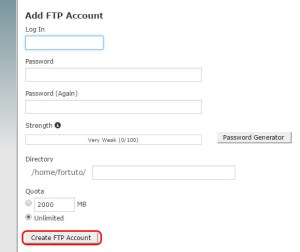 Fill The FTP Account Form