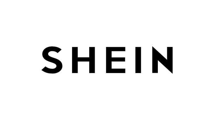 After PUBG Mobile, China   s SHEIN online shopping platform to relaunch in India