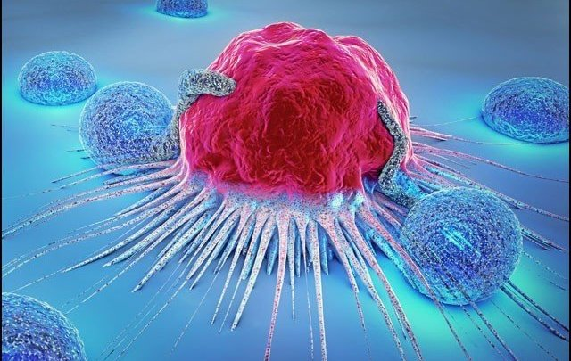 وہ دوا جو سرطان زدہ خلیوں کو بھوک سے مار کردیتی ہے