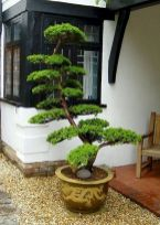 80 Wonderful Side Yard And Backyard Japanese Garden Design Ideas (31)
