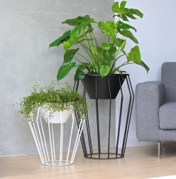 Indoor Garden Office and Office Plants Design Ideas For Summer (5)
