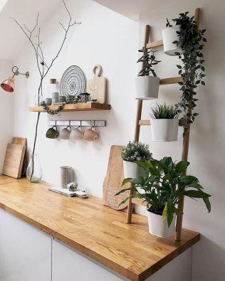 Indoor Garden Office and Office Plants Design Ideas For Summer (53)