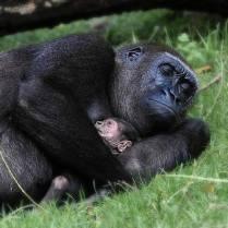 Sleeping with Mum
