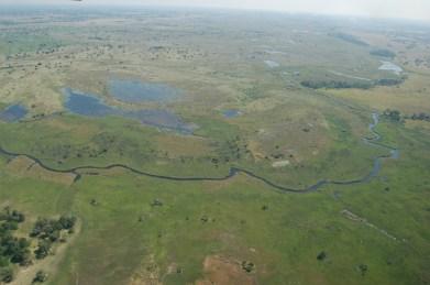 Okavango_Delta,_Botswana