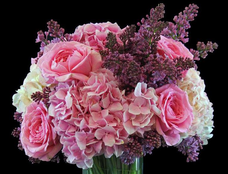 Ariston Floral Boutique