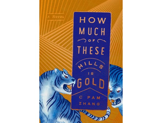 <em>How Much of These Hills Is Gold</em> by C Pam Zhang