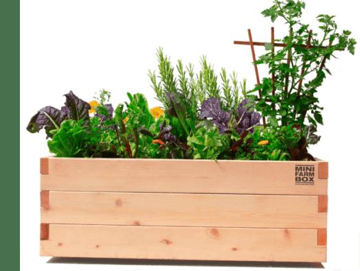 Mini Farm Patio Box