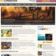 Connected Blogger Templates