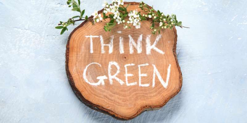 think green written in chalk on section of tree stump