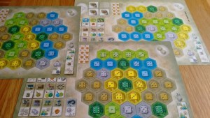 Castles of Burgundy player boards