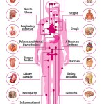 24 effects of HIV on the body