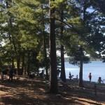 Western: Senior lez orgs host picnic