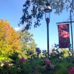 Campus Scene: N.C. university makes 'friendly' list