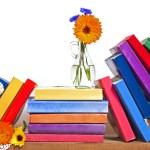 Western: Literacy Reading, Seniors Dance