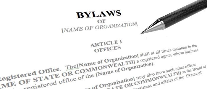 Gora LLC Rich Gora Stamford Connecticut attorneys securities corporation board bylaws charter PPM