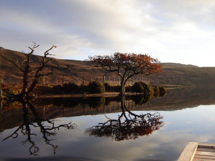 Gordonbush Estate | Struan Lodge | Loch Brora
