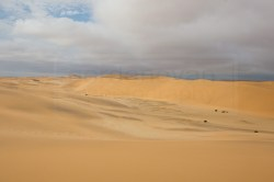 130116_wm_desert_tour_C45H2410