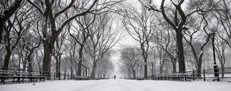 Pedestrains barve the cold on The Mall in Central Park in New York City, Friday Jan. 9, 2015. (Gordon Donovan/Yahoo News)