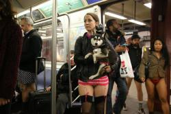 A young woman participating in the No Pants Subway Ride holds her dog who is wearing matching underwear, on the subway in New York City, Sunday, Jan. 10, 2016. (Gordon Donovan/Yahoo News)