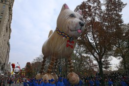 Trixie the Dog balloon floats in the 90th Macy's Thanksgiving Day Parade in New York, Thursday, Nov. 24, 2016. (Gordon Donovan/Yahoo News)
