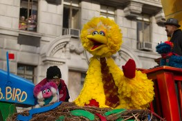 Big Bird rides on the 1-2-3 Sesame Street float during the 90th Macy's Thanksgiving Day Parade in New York, Thursday, Nov. 24, 2016. (Gordon Donovan/Yahoo News)