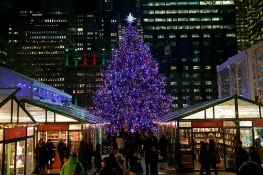 A Christmas tree in stands in the Winter Village in Bryant Park in the heart of New York City. (Gordon Donovan/Yahoo News)