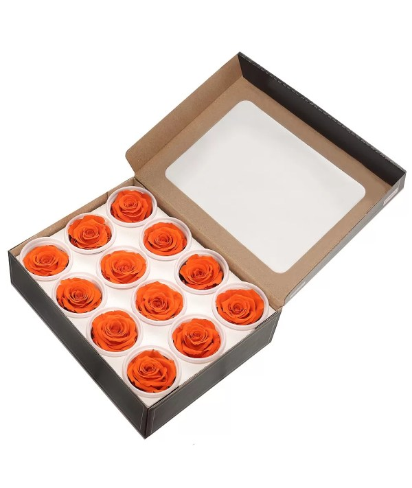 Orange roses order online