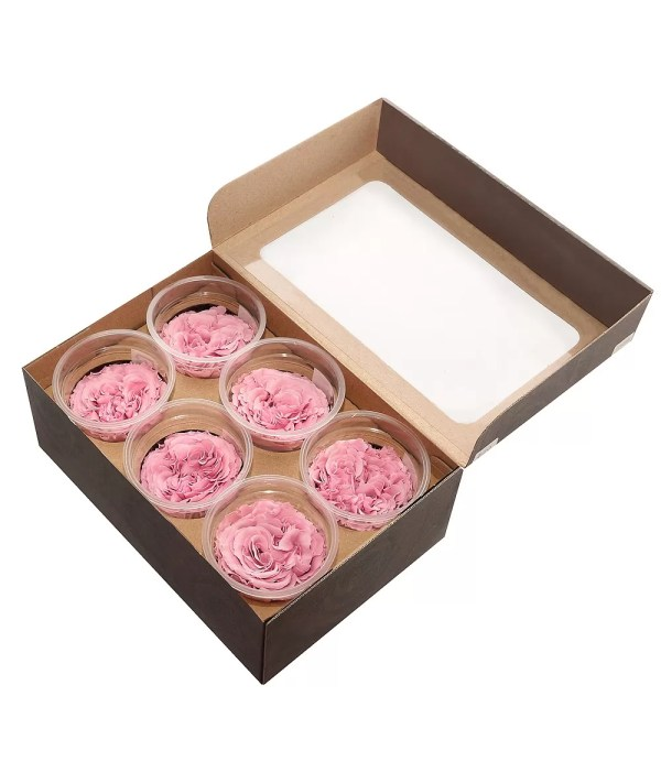 rare roses order online, garden roses buy online, carmen forever,