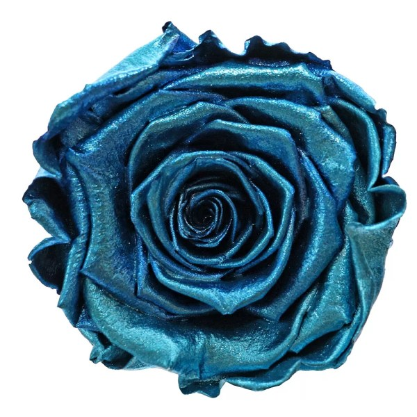 Metallic blue roses buy
