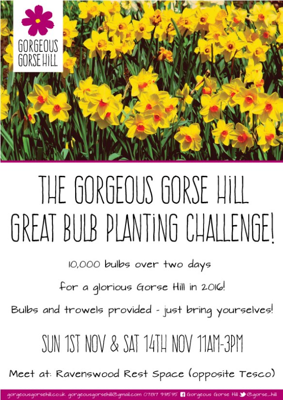 Great Bulb Planting Challenge 2015!