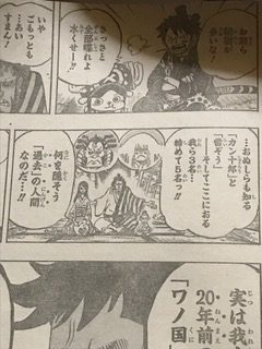 ONEPIECE919話ネタバレトキトキの実能力者