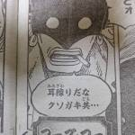 【ONEPIECE980話以降考察】フーズ・フーの正体は足長族?|剣士+ゾオン系古代種?