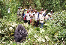 Photo of Sud-Kivu : Le Ministre National du tourisme satisfait de sa visite au Parc National de Kahuzi-Biega