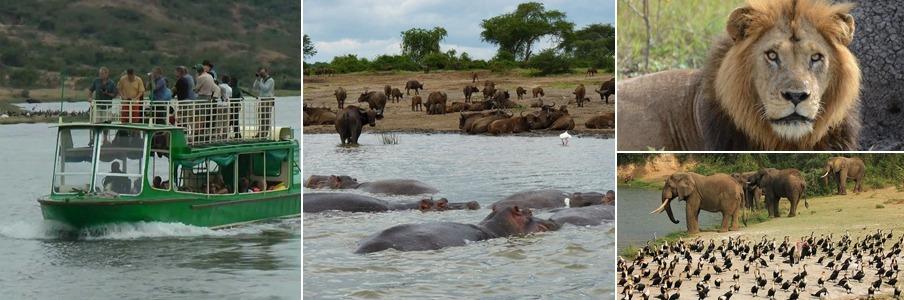 6 Days Uganda Safari Adventure
