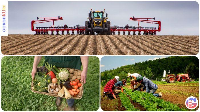 2 апреля 2021 состоится установочная сессия проекта по бесплатному обучению органическому земледелию