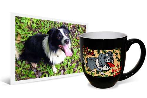 """14oz black coffee mug with engraved and painted image of Border Collie and text saying """"I herd you"""" beside the original photo"""