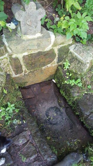 źródełko w tajemniczym ogrodzie