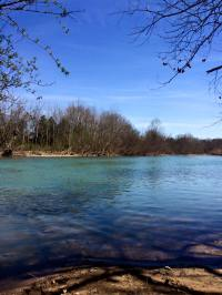 Archey Fork of the Upper Little Red River in Clinton, AR
