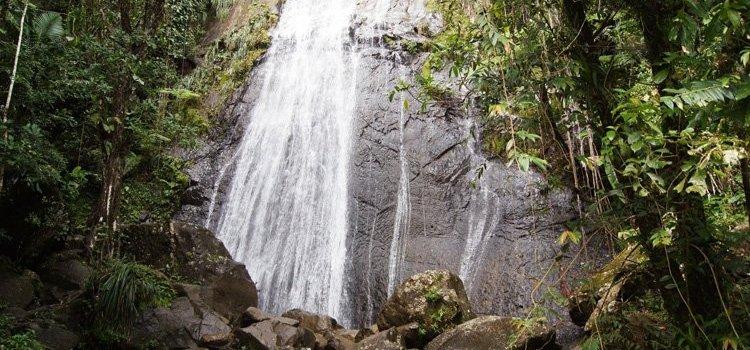 La Coca Waterfall – El Yunque