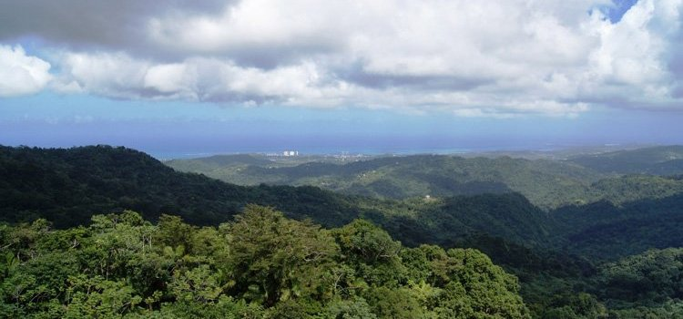 Yokahu Tower – El Yunque
