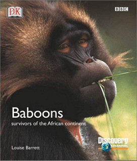 Baboons -survivors of the African continent - Louise Barrett book
