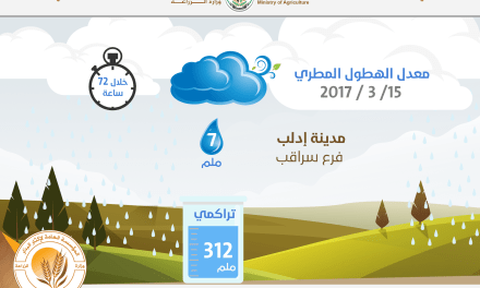 Rainfall in the city of Saraqeb 15/3/2017