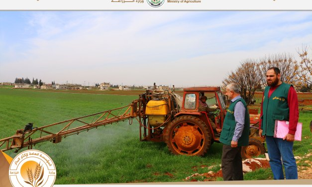 The organization team is supervising the mixing of herbicides and the preparation of spray liquid