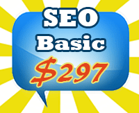 SEO Services (Basic)