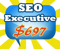 SEO Executive Package
