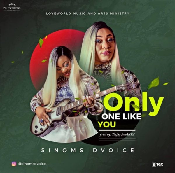 Sinoms Dvoice - Only One Like You