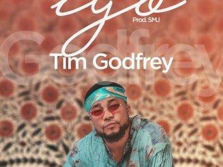 TIM GODFREY FT. SMJ AND EMEKA – IYO