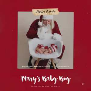Psalm Ebube Mary's Baby Boy. song download