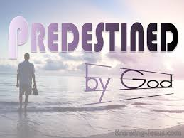Predestined to Life